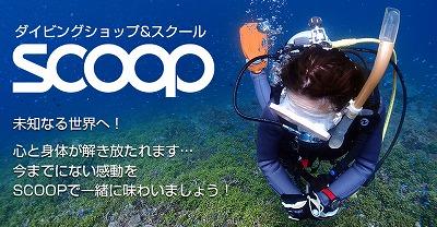 ダイビングショップ&スクール SCOOP
